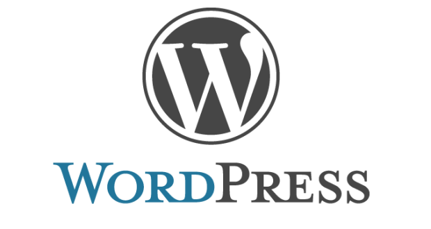 WordPress Is All the Rage – Why Your Business Needs It!